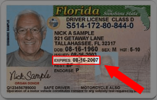 Guide License Drivers Florida Dmv Renewal com