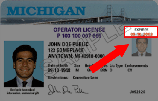 Michigan Drivers License